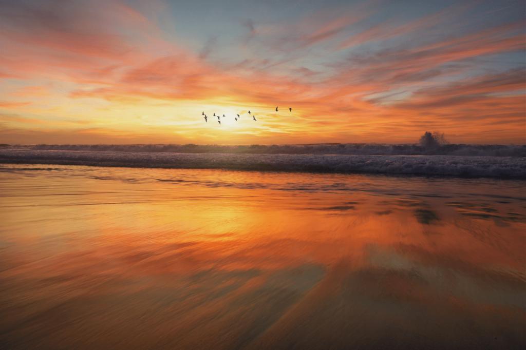 中田 暖人:夕日の浜辺