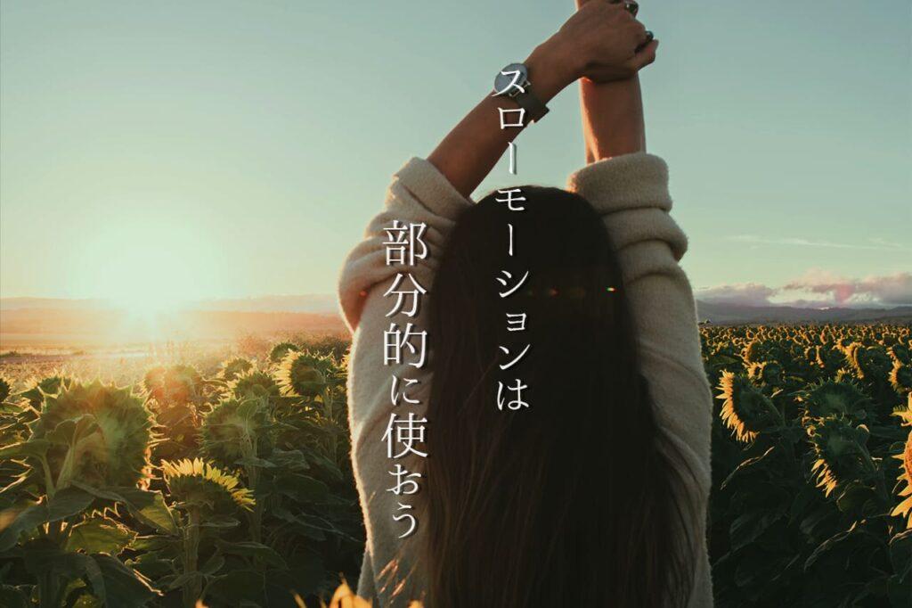 中田 暖人:ひまわり畑と女性